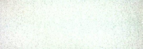 Polimeri acrilici sostitutivi per umidificatore Adorini deluxe